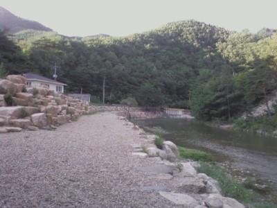 jinj**** 님의 프로필