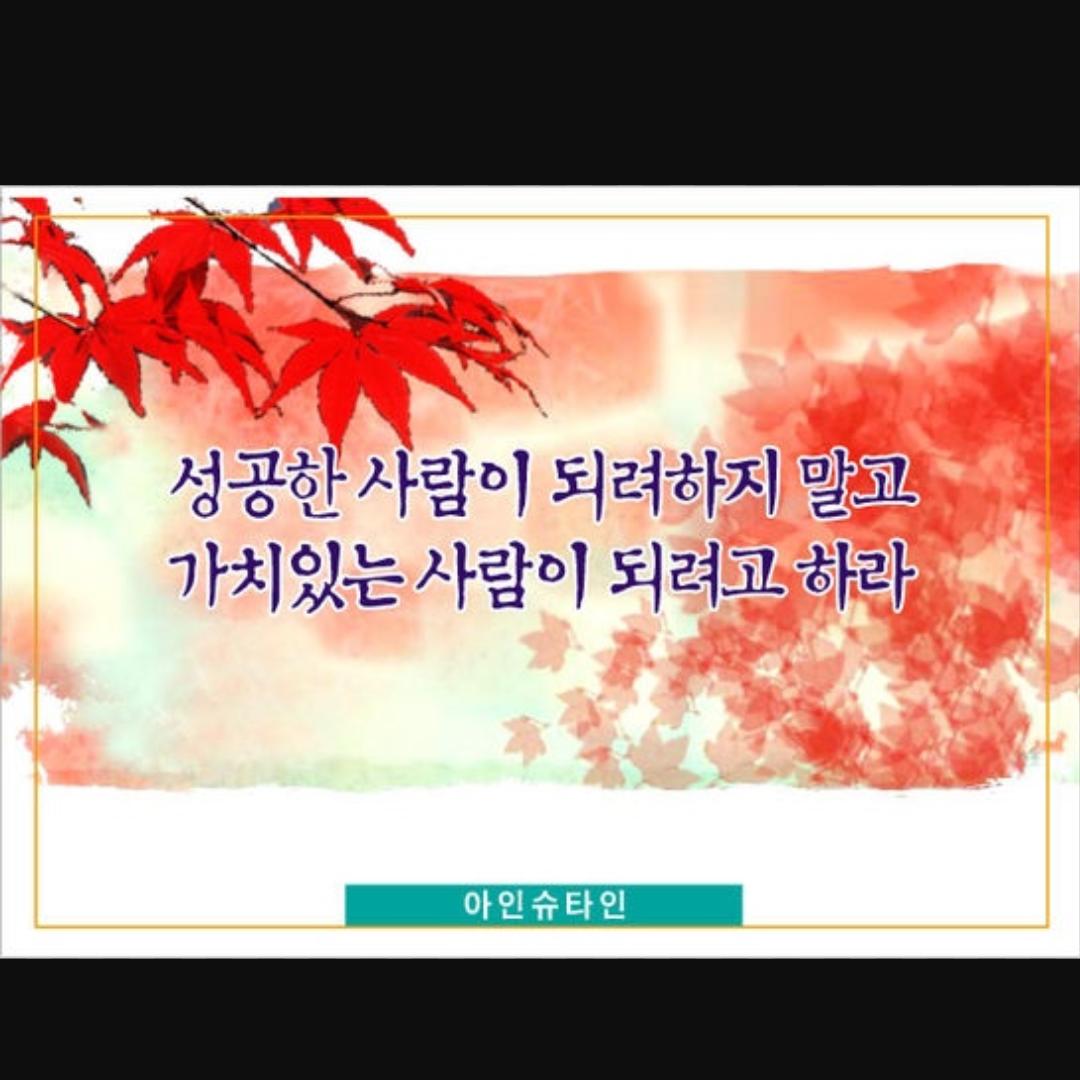myzx**** 님의 프로필