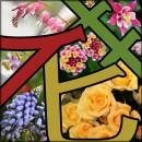 꽃누리농원총각님 프로필 사진