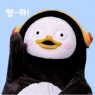 koco**** 님의 프로필